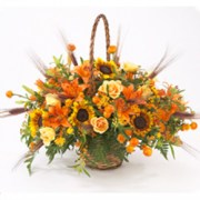 interflora_product_00511